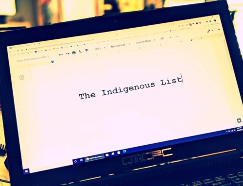 Inaugural Prestigious List to Highlight Indigenous Work